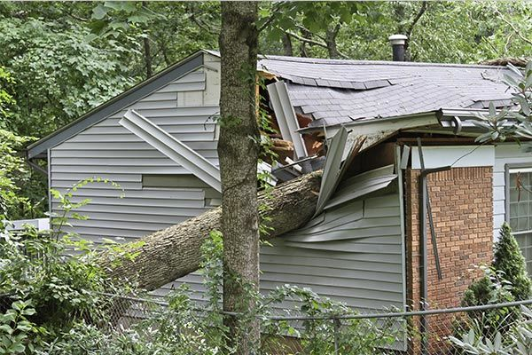 Storm causing tree to fall on home