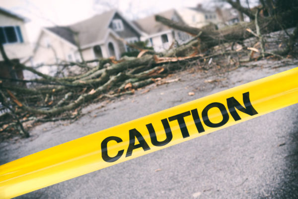 Caution tape around large trees downed in middle of neighborhood