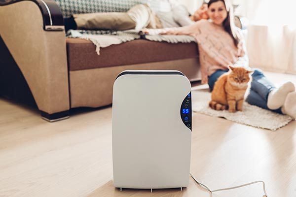 Woman using dehumidifier to prevent mold and mildew