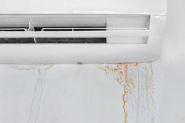 leaking-AC-unit-with-mold