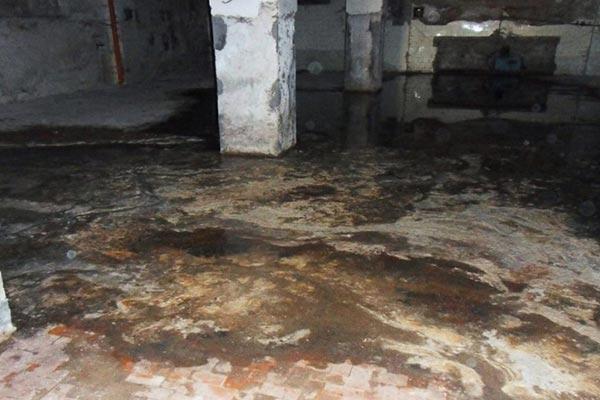 basement-sewage